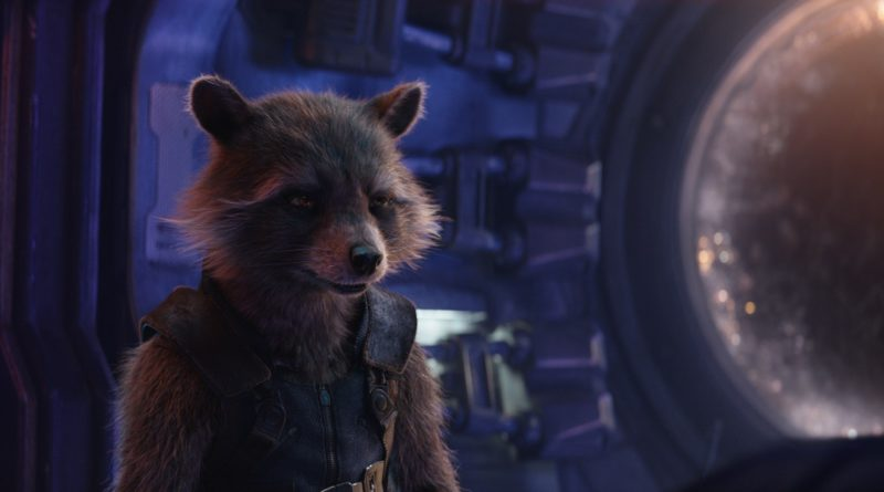 Rocket, Avengers Infinity War, Avengers Endgame, Guardians of the Galaxy