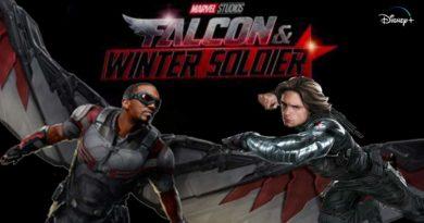 Falcon & Winter Soldier, Disney+, Marvel